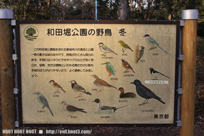 和田堀公園の野鳥の看板